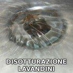 lavandini